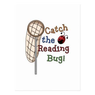 Coja las camisetas y los regalos del insecto de la tarjetas postales