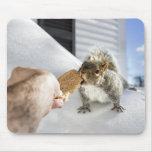 Cojín de la ardilla alfombrilla de raton