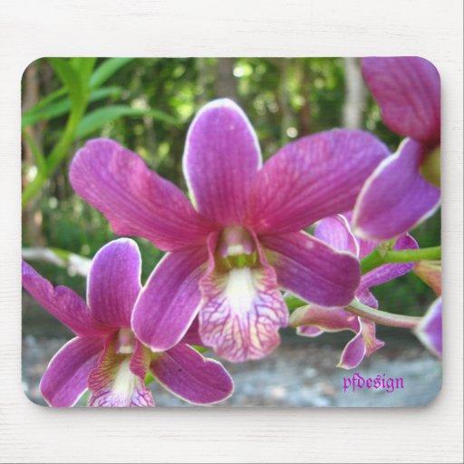 Cojín de la orquídea alfombrilla de ratón