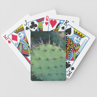Cojín de la pera de Prickley Baraja Cartas De Poker