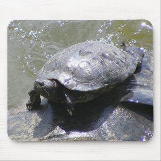 Cojín de la tortuga tapete de raton