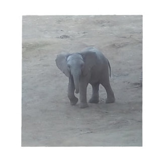 Cojín de nota del elefante del bebé - por la bloc de notas