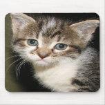 Cojín de ratón adorable del gatito alfombrillas de ratones