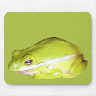 Cojín de ratón americano verde de la rana arbórea alfombrilla de ratón