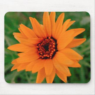 Cojín de ratón anaranjado de la flor mousepads