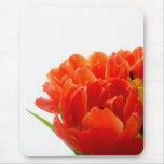 Cojín de ratón anaranjado de los tulipanes alfombrilla de ratones