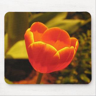 Cojín de ratón anaranjado del tulipán tapetes de ratón