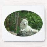 Cojín de ratón ártico del lobo alfombrillas de raton
