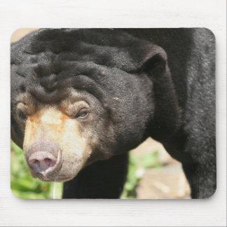 Cojín de ratón asiático del oso alfombrilla de ratones