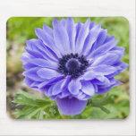Cojín de ratón azul de la flor del aster tapete de raton