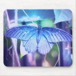 Cojín de ratón azul de la mariposa tapetes de raton