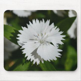 Cojín de ratón blanco de la flor del clavel mousepads