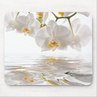 Cojín de ratón blanco de las orquídeas mouse pad