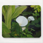 Cojín de ratón blanco de Waterlily Tapete De Raton