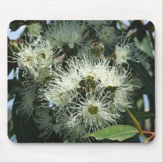 Cojín de ratón blanco del flor del eucalipto tapete de raton