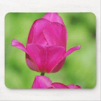 Cojín de ratón bonito de los tulipanes alfombrillas de ratones