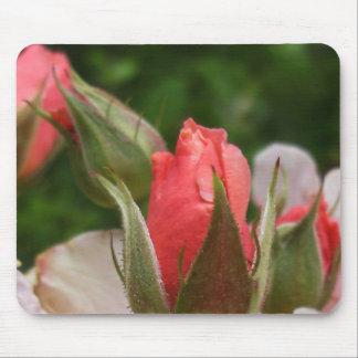 Cojín de ratón: Brotes color de rosa Alfombrillas De Ratón