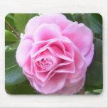 Cojín de ratón - camelia del rosa color de rosa alfombrilla de raton