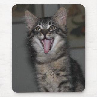 Cojín de ratón caspio del gatito tapete de ratones