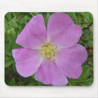 Cojín de ratón color de rosa salvaje de la pradera alfombrilla de ratón