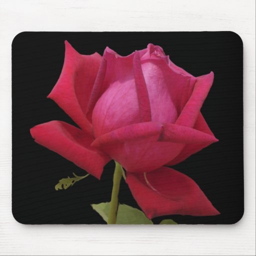 Cojín de ratón color de rosa tapete de ratón
