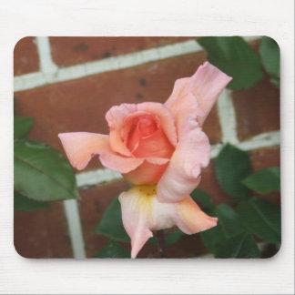 cojín de ratón color de rosa tapetes de raton