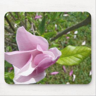 Cojín de ratón con la flor de la magnolia tapete de ratones