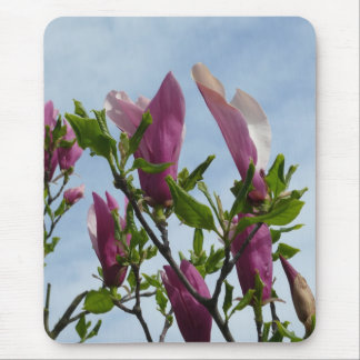 Cojín de ratón con las flores de la magnolia alfombrilla de raton