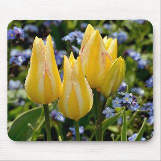 Cojín de ratón con los tulipanes amarillos hermoso alfombrillas de raton
