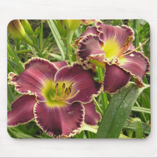 Cojín de ratón con pares de Daylilies púrpuras Tapetes De Ratones