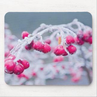 Cojín de ratón congelado de las bayas del invierno tapetes de raton