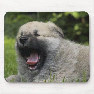 Cojín de ratón de bostezo del perro chino de perro tapete de ratones