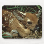 Cojín de ratón de ciervos del bebé tapete de ratones
