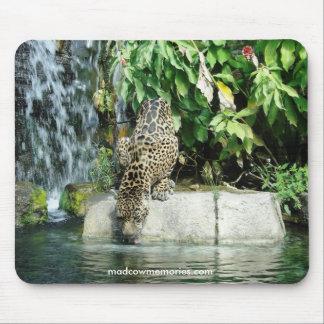 Cojín de ratón de Jaguar Tapete De Ratones
