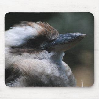 Cojín de ratón de Kookaburra Alfombrilla De Raton