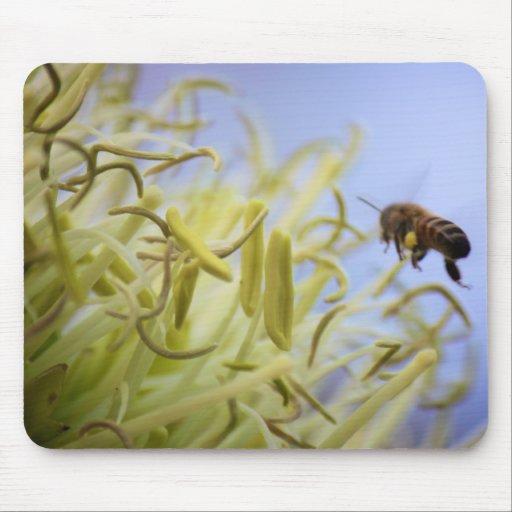 Cojín de ratón de la abeja del vuelo alfombrilla de raton