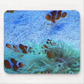 Cojín de ratón de la anémona de mar de los pescado alfombrillas de ratón