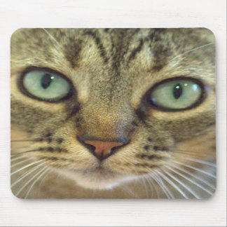 Cojín de ratón de la cara del gato alfombrilla de ratones