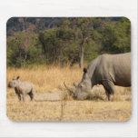 Cojín de ratón de la familia de rinoceronte tapetes de ratón