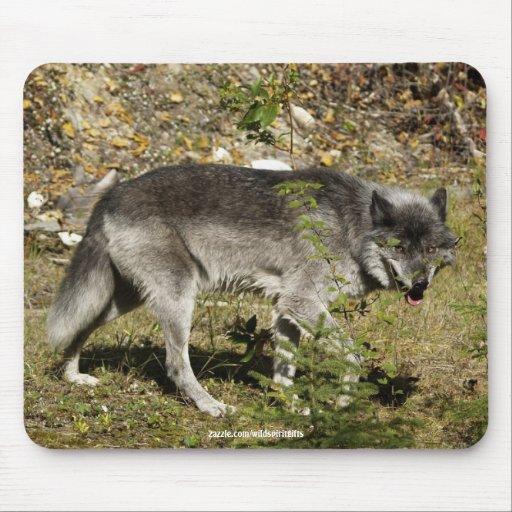 Cojín de ratón de la fauna del lobo gris alfombrilla de raton