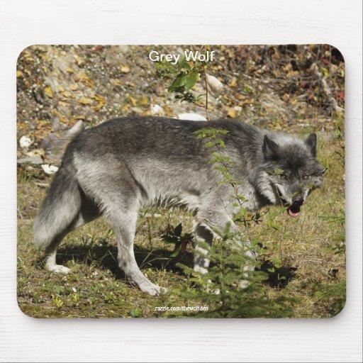 Cojín de ratón de la fauna del lobo gris alfombrillas de ratones