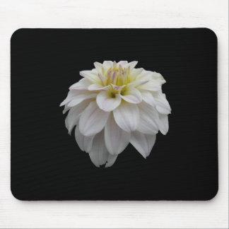 Cojín de ratón de la flor blanca alfombrilla de ratones
