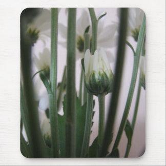 Cojín de ratón de la flor blanca mouse pads