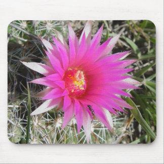 Cojín de ratón de la flor del cactus de la bola F0 Tapete De Ratón