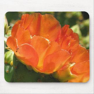 Cojín de ratón de la flor del cactus alfombrilla de raton