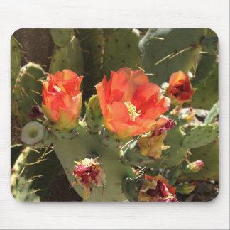 Cojín de ratón de la flor del cactus tapete de raton