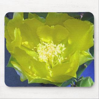 Cojín de ratón de la flor del cactus alfombrilla de ratón