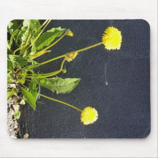 cojín de ratón de la flor salvaje mousepad