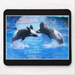 Cojín de ratón de la foto de la ballena alfombrillas de raton