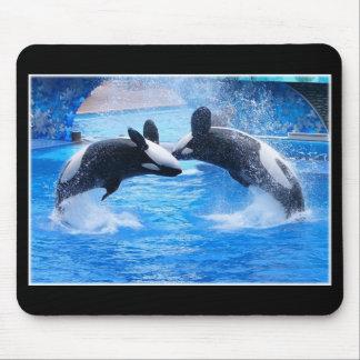 Cojín de ratón de la foto de la ballena tapetes de raton